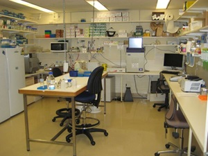 The Queensland Museum's Molecular Identities Lab