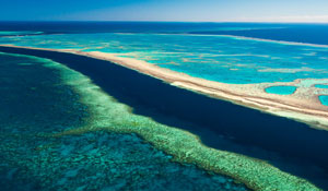 Great Barrier Reef photography display