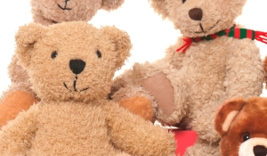 Teddy Bears Picnic